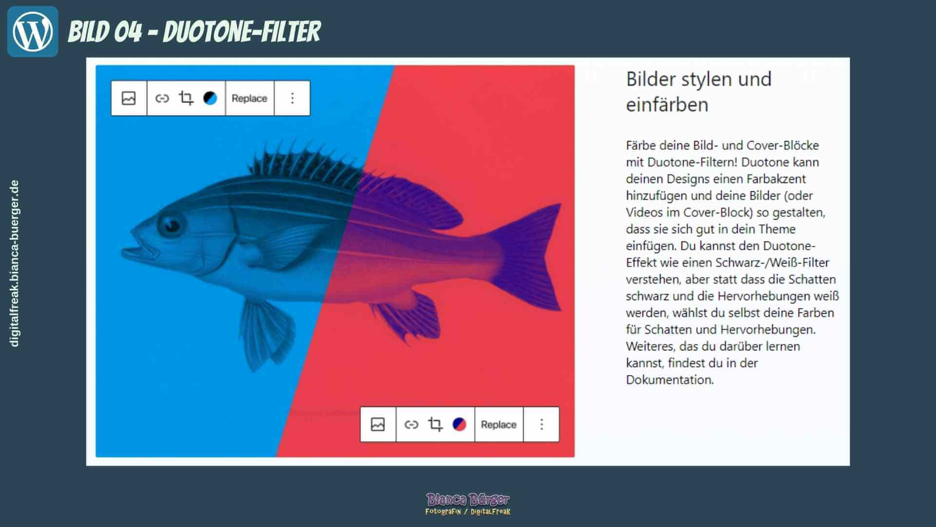 WordPress-5-8_04_Duotone-Filter